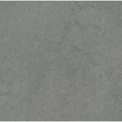 Marmoleum Click Cinch Loc 11.81 x 11.81 x 9.9mm Cork Laminate in Gray