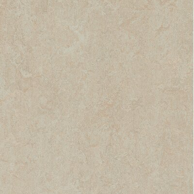 Marmoleum Click Cinch Loc 11.81 x 11.81 x 9.9mm Cork Laminate Flooring in Tan