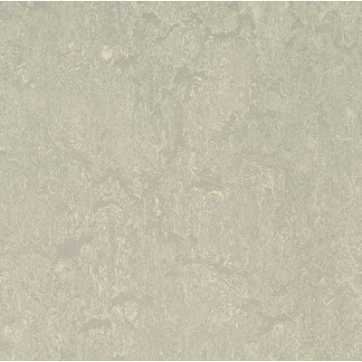 Marmoleum Click Cinch Loc 11.81 x 11.81 x 9.9mm Cork Laminate Flooring in Gray