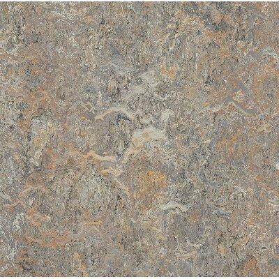 Marmoleum Click Cinch Loc 11.81 x 11.81 x 9.9mm Cork Laminate Flooring in Gray
