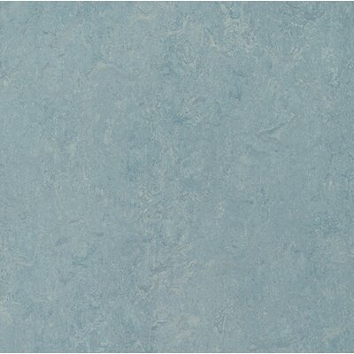 Marmoleum Click Cinch Loc 11.81 x 11.81 x 9.9mm Cork Laminate in Blue