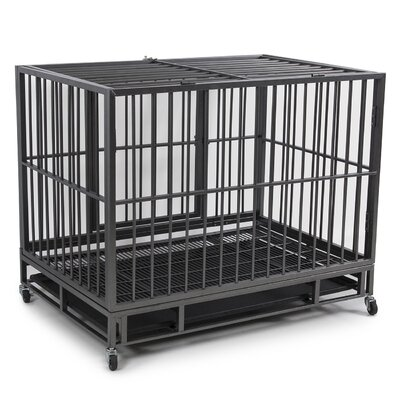Dog Kennel Heavy Duty Pet Crate Color: Silver