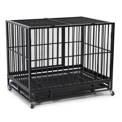 Dog Kennel Heavy Duty Pet Crate Color: Black