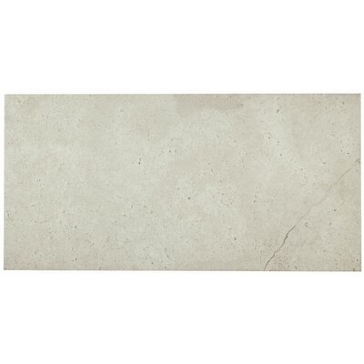 Caf� Society 12 x 24 Porcelain Field Tile in Savoire Faire