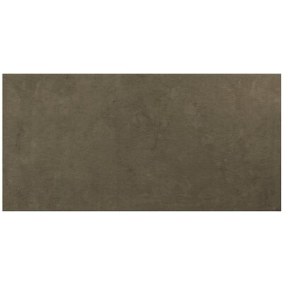 Pathways 12 x 24 Porcelain Field Tile in Campground