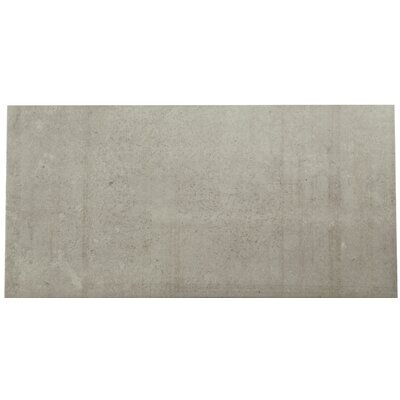 Pathways 12 x 24 Porcelain Field Tile in Coastal Drive