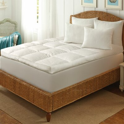 Ultimate Comfort Featherbed with Removable Cotton Cover Size: Queen