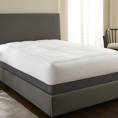 Pillow Top Luxury Mattress Pad Size: King