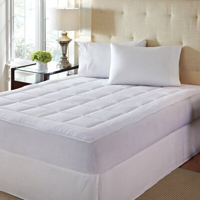 Microplush Polyester Mattress Pad Size: Queen