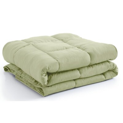 Vilano Springs  Down Alternative Comforter Size: Full / Queen, Color: Sage Green