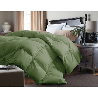 Down Alternative Comforter Size: Full/Queen, Color: Powder Green