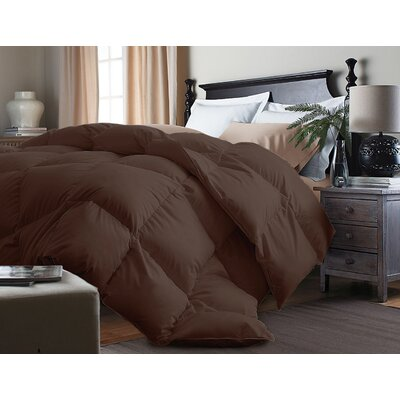 Down Alternative Comforter Size: Twin, Color: Chocolate