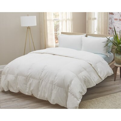 All Season Duvet Insert with Piped Edges Size: KIng