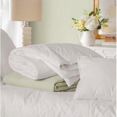 Down Alternative Comforter Size: Full / Queen