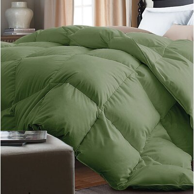 Down Alternative Comforter Size: Twin, Color: Powder Green