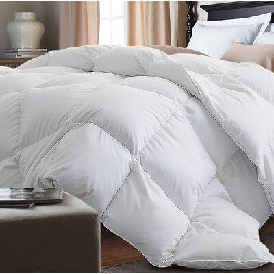 Down Alternative Comforter Size: Twin, Color: White