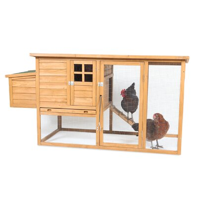 Flat Top Complete Chicken Coop with 2 Roosting Bar