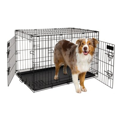 2 Door Training Retreat Wire Yard Kennel Size: 25 H x 22 W x 34 L