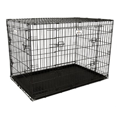 Elite Retreat Wire Yard Kennel Size: 31 H x 28 W x 43 L