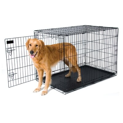 Training Retreat Wire Yard Kennel Size: 28 H x 25 W x 38D