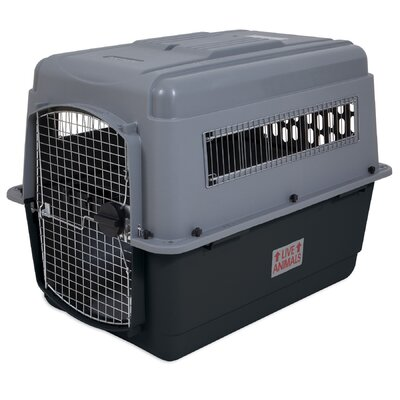 Sky Vault Door Yard Kennel Size: 27 H x 25 W x 36 L