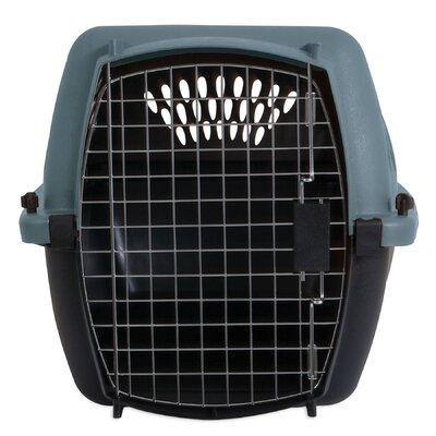 Porter Fashion Pet Carrier Size: Medium (14.5 H x 16.7 W x 24.1 L), Color: Metallic Pearl Ash Blue / Coffee
