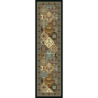 Specialty Badillo Brown Area Rug Rug Size: Runner 2 x 8