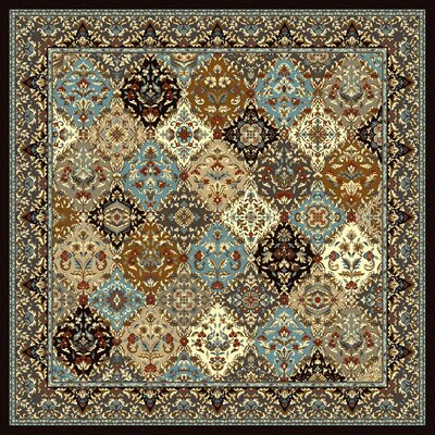 Specialty Badillo Brown Area Rug Rug Size: Square 8