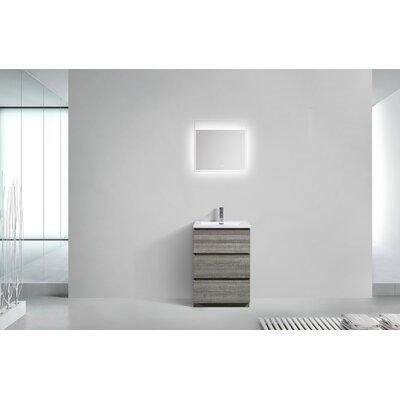 Riker Free Standing 24 Single Bathroom Vanity Set Base Finish: High Gloss Ash Gray
