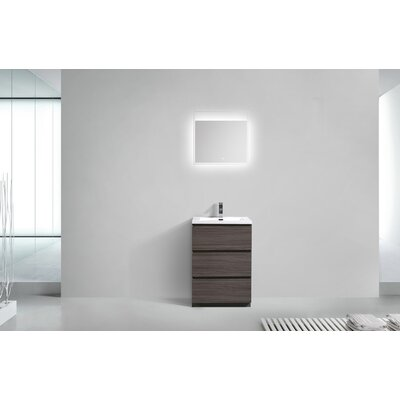 Riker Free Standing 24 Single Bathroom Vanity Set Base Finish: Dark Gray Oak