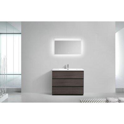 Riker Free Standing 42 Single Bathroom Vanity Set Finish: Dark Gray Oak