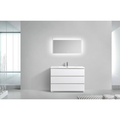 Riker Free Standing 48 Single Bathroom Vanity Set Finish: High Gloss White