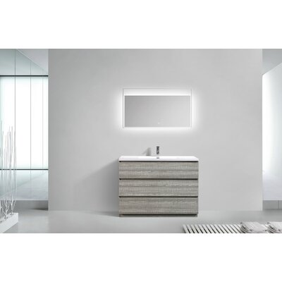 Riker Free Standing 48 Single Bathroom Vanity Set Finish: High Gloss Ash Gray