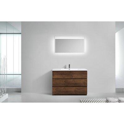 Riker Free Standing 48 Single Bathroom Vanity Set Finish: Rosewood