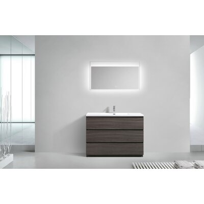 Riker Free Standing 48 Single Bathroom Vanity Set Finish: Dark Gray Oak