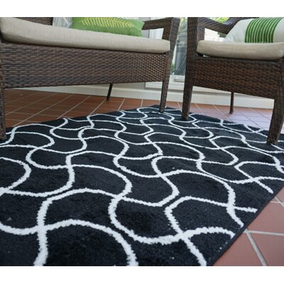 One-of-a-Kind Algedi Infinity Black/White Area Rug