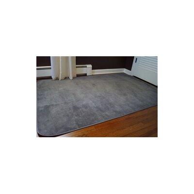 Elezi Gray Area Rug Rug Size: 3 x 5