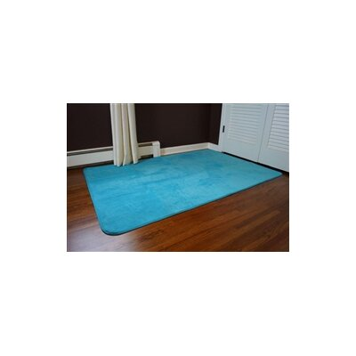 Sperling Aqua Area Rug Rug Size: 6 x 9