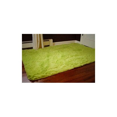 Ledoux Plush Lime Area Rug Rug Size: 4 x 6