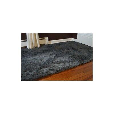 Ledoux Plush Gray Area Rug Rug Size: 4 x 6