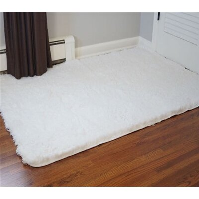 Ledoux Plush White Area Rug Rug Size: 3 x 5