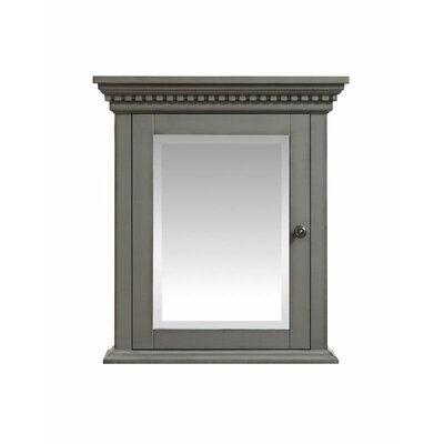 Ruthann 24 x 27 Surface Mount Medicine Cabinet Finish: French Gray