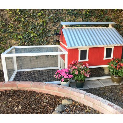 Chicken Coop with Chicken Run