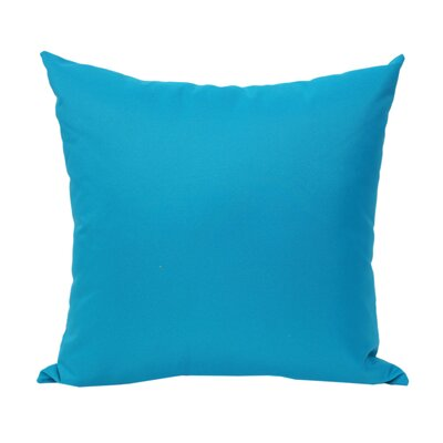 Outdoor Throw Pillow Color: Aqua