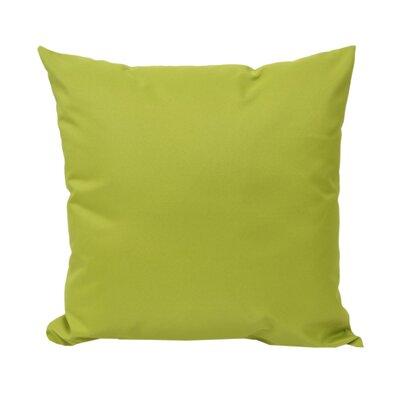 Outdoor Throw Pillow Color: Green