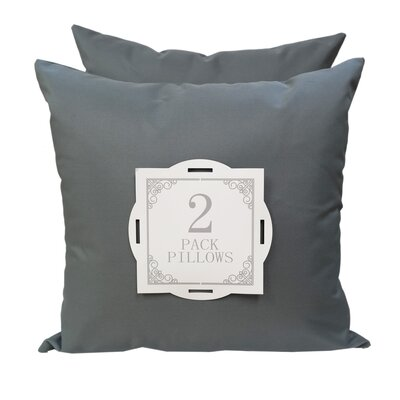 Outdoor Throw Pillow Color: Gray