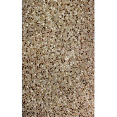 Hair Hyde Brown Solid Area Rug Rug Size: 3 x 5