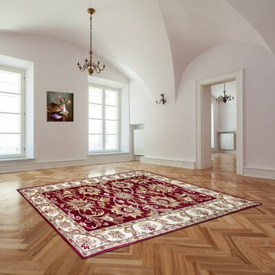 Broadway Hand-Tufted Red Area Rug Rug Size: 8 x 11