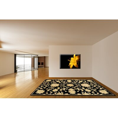 Joyce Black Area Rug Rug Size: Rectangle 36 x 56