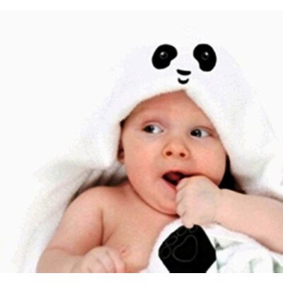 Remy Baby Hoodie Bath Towel